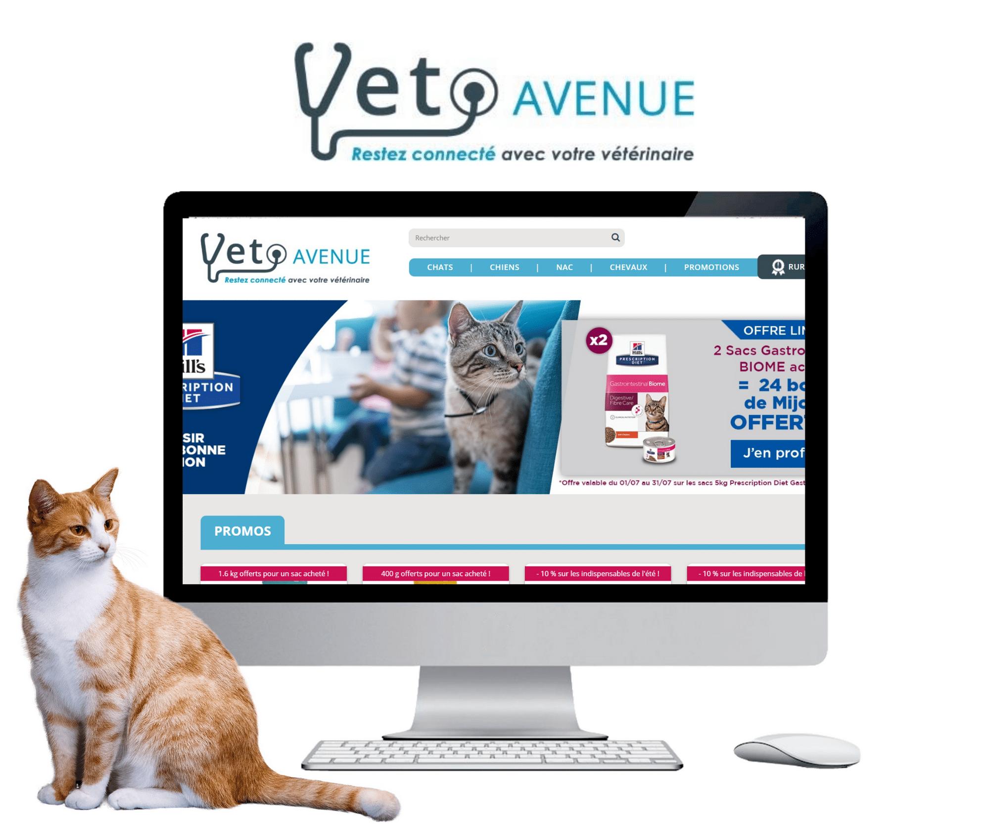 client veto avenue