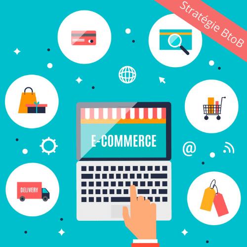 stratégie BtoB ecommerce